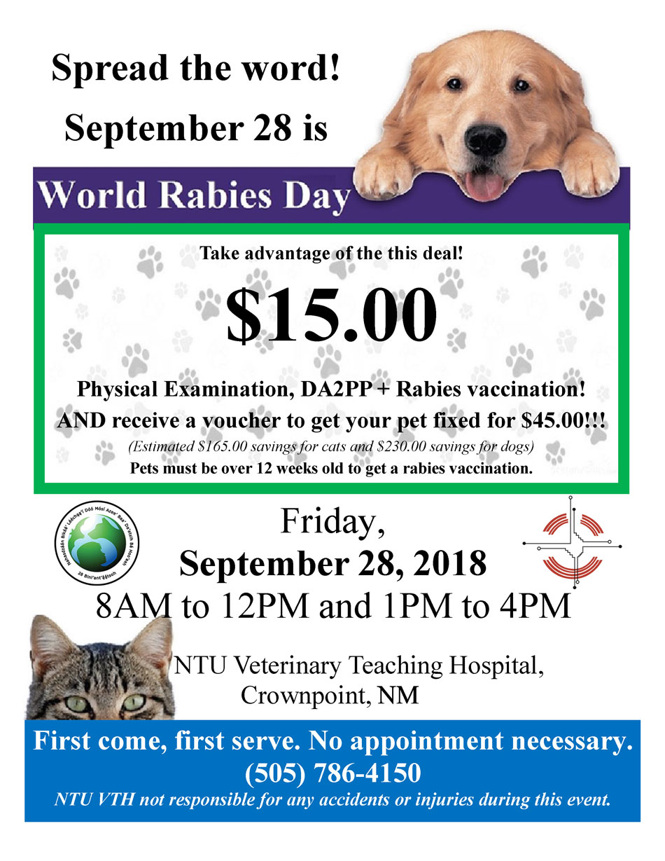 Word Rabies Day 2018