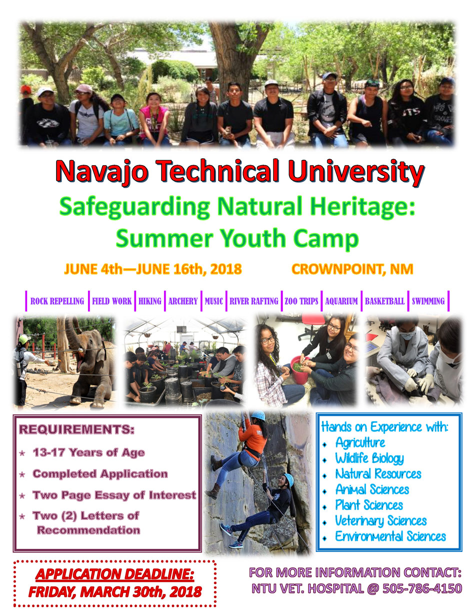 NTU Summer Camp